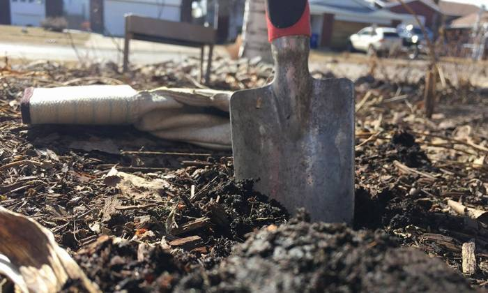 Soil Solutions: The Dirt on Your Home Garden Post-fire